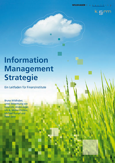 Information Management Strategie