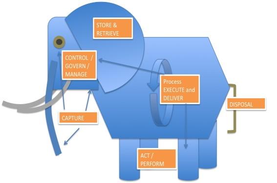 Elefant-klein-icon